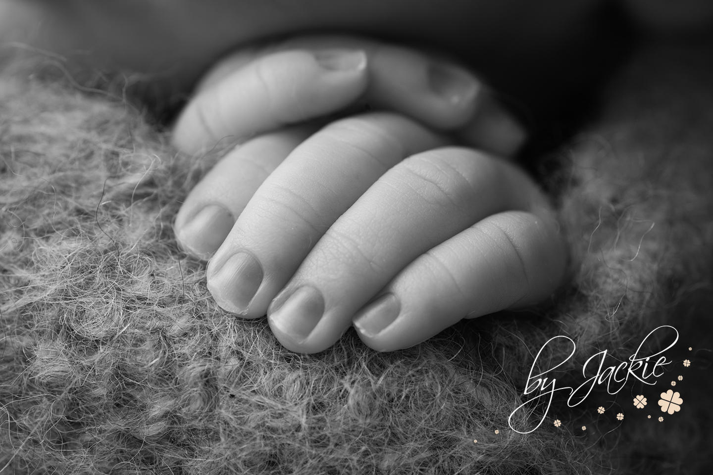 Ten tiny fingers by Babies By Jackie Photography in North Yorkshire, UK