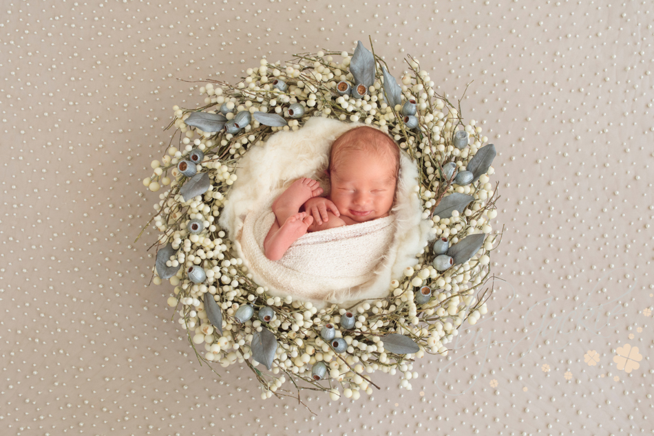 Newborn baby boy in nest by Babies by Jackie, Market Weighton, near Asselby, Hull and York, Yorkshire, UK