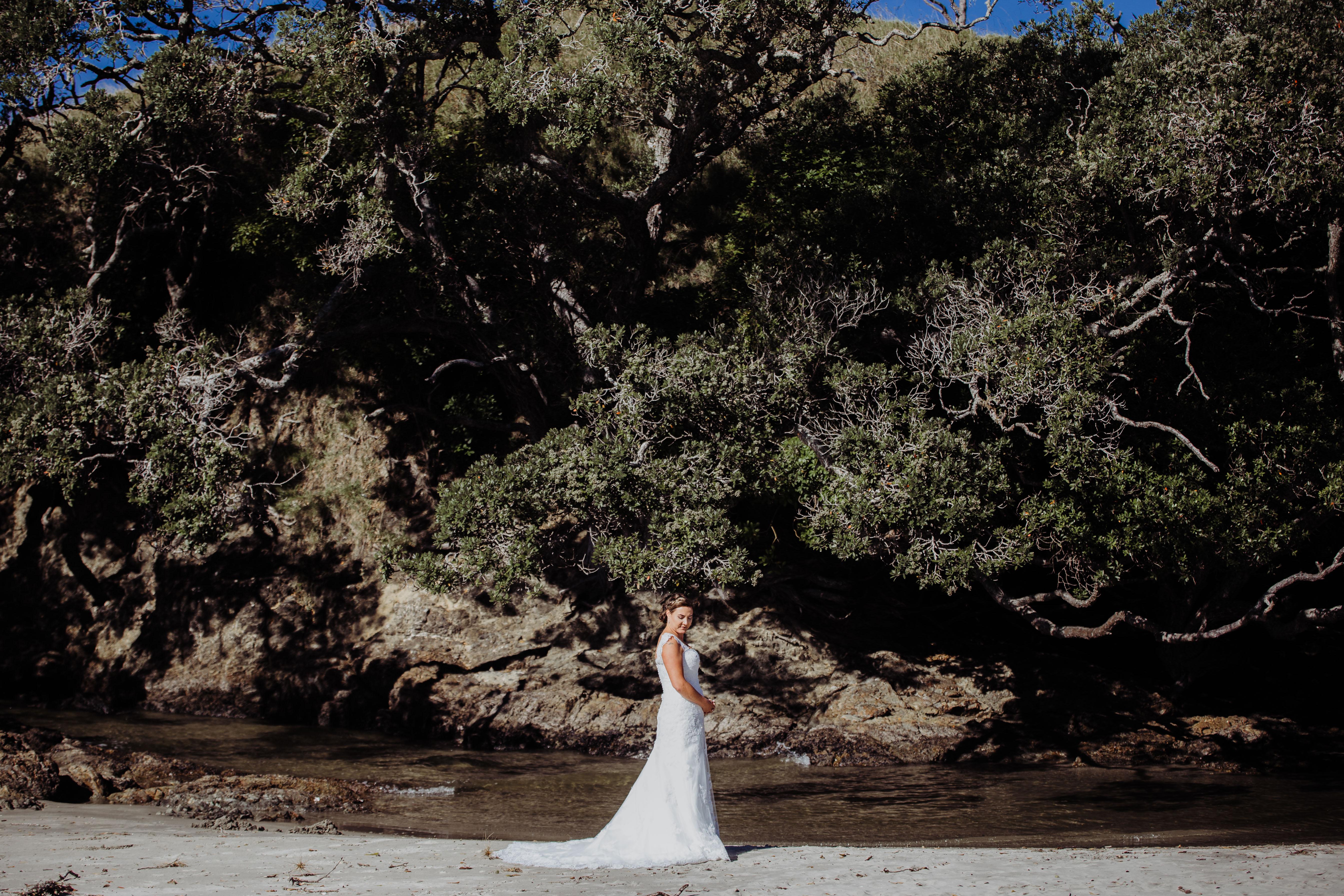 Waipu wedding photographer